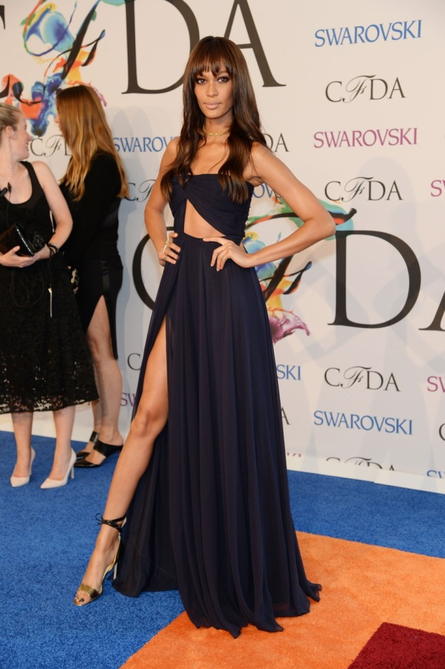 JoanSmalls_CFDA-Awards-14